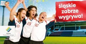 Województwo Śląskie - billboardy